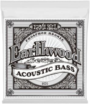 ERNIE BALL 2070,Earthwood,Acoustic Bass